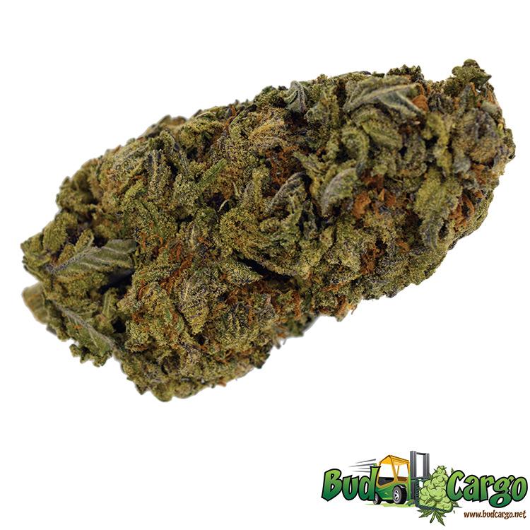 MK Ultra - Wholesale-buy cannabis online