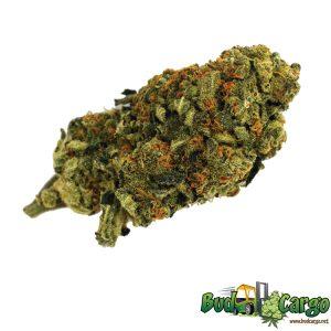 buy bubblegum cannabis online
