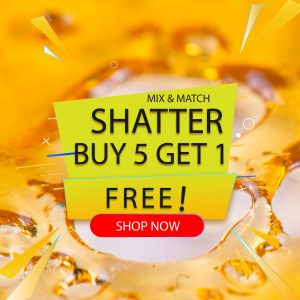 buy shatter mix and match online