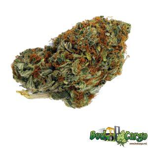 buy hammer cannabis online